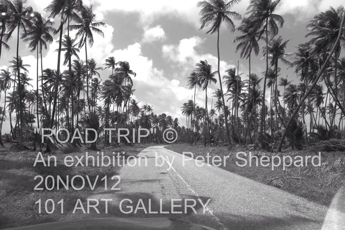Peter Sheppard: Road Trip
