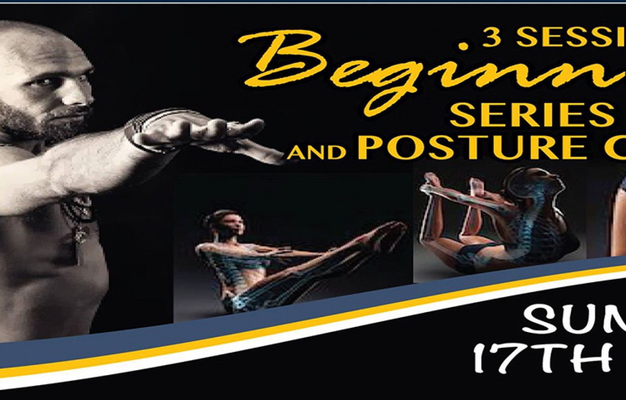 1 Day Beginner's Series & Posture Clinic