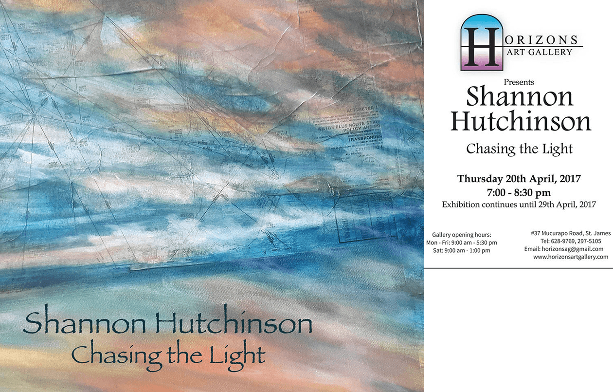 Shannon Hutchinson -  Chasing the Light  Art Exhibit