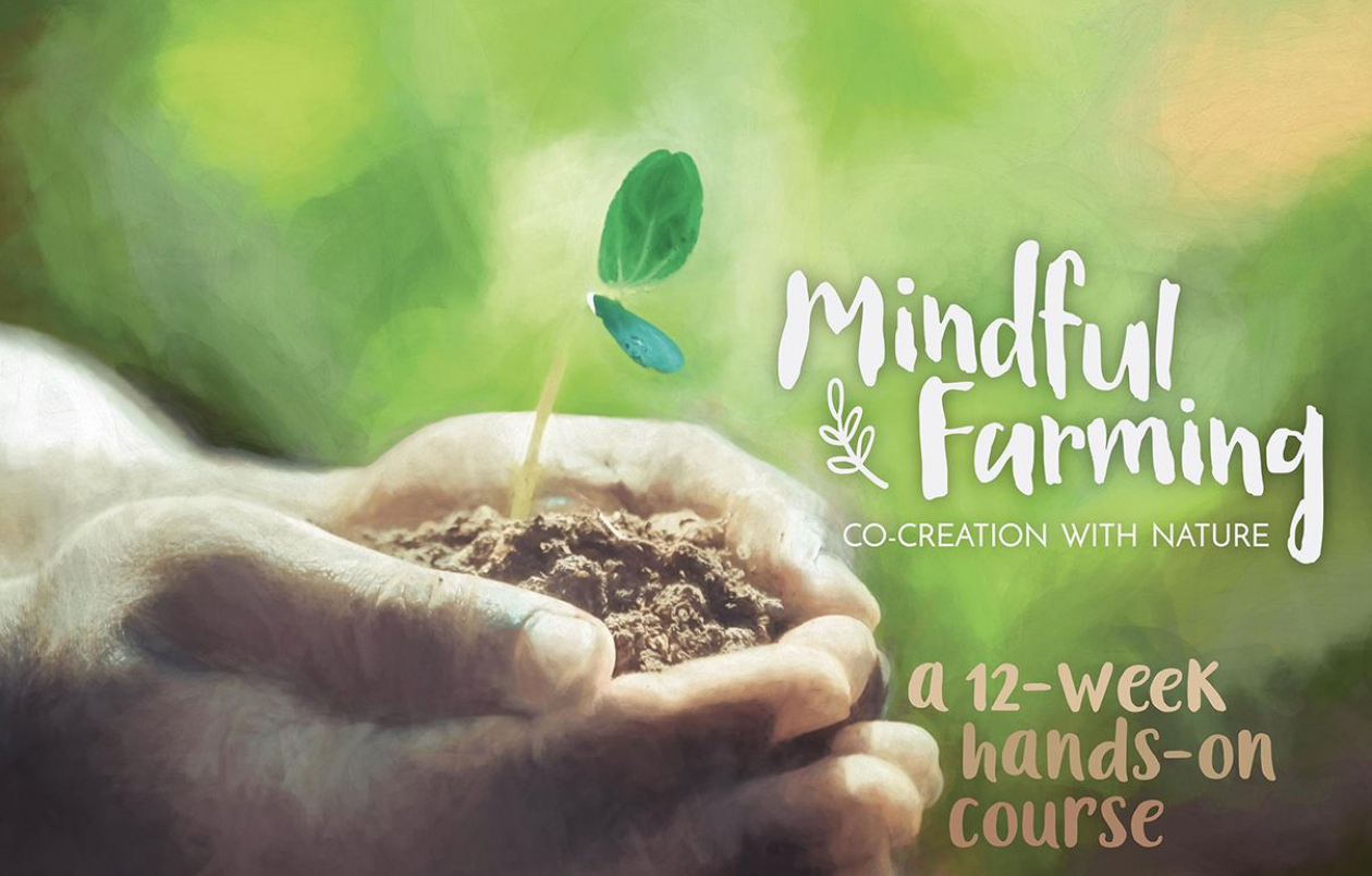 Mindful Farming 12-Week Course