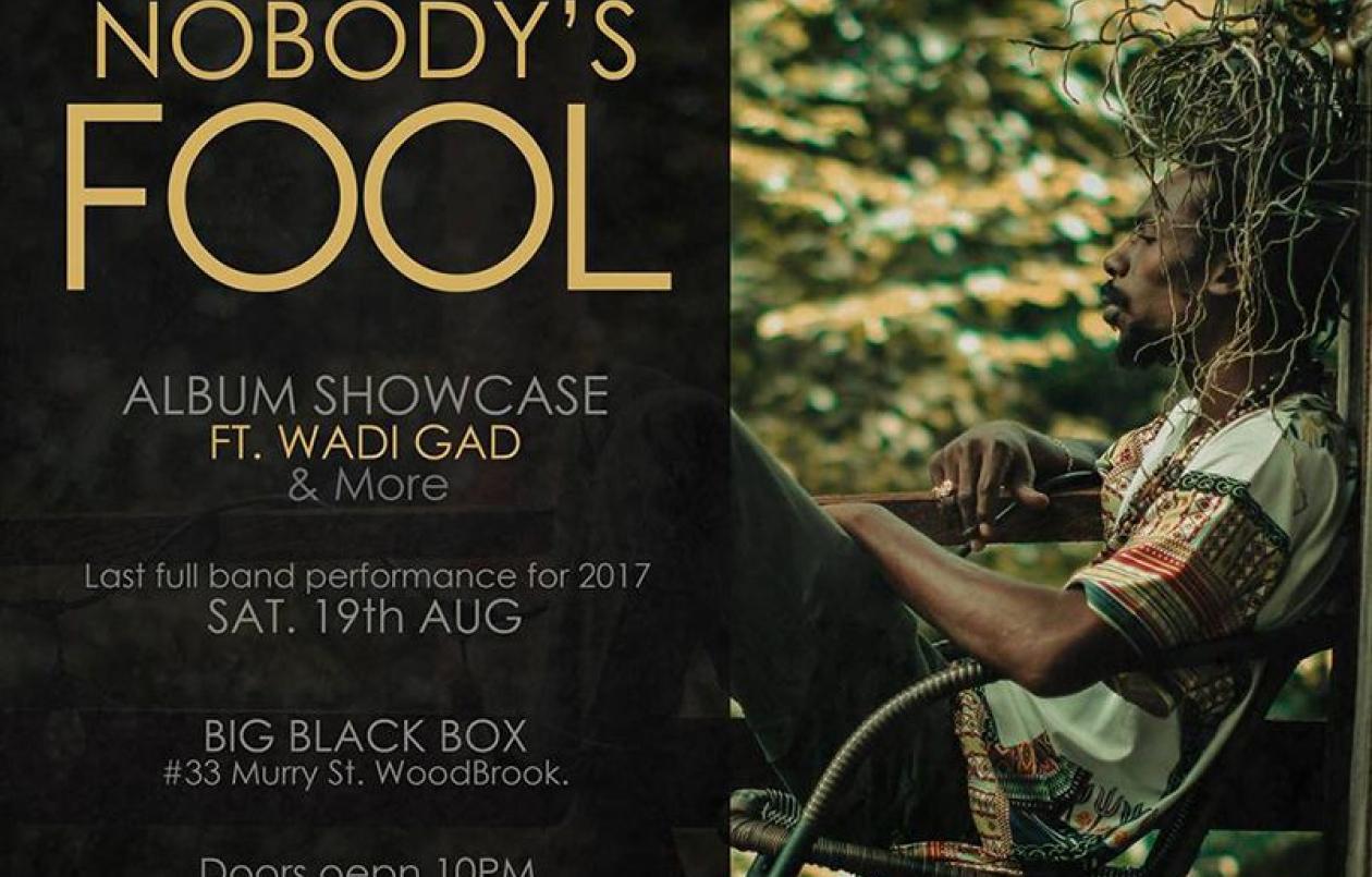 Nobdoy's Fool Album Showcase