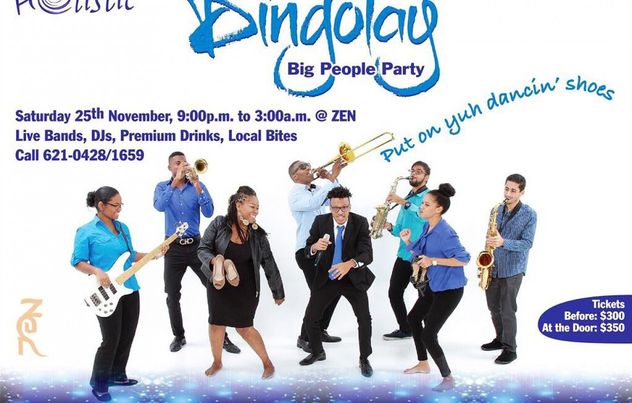 Dingolay: A Big People Party