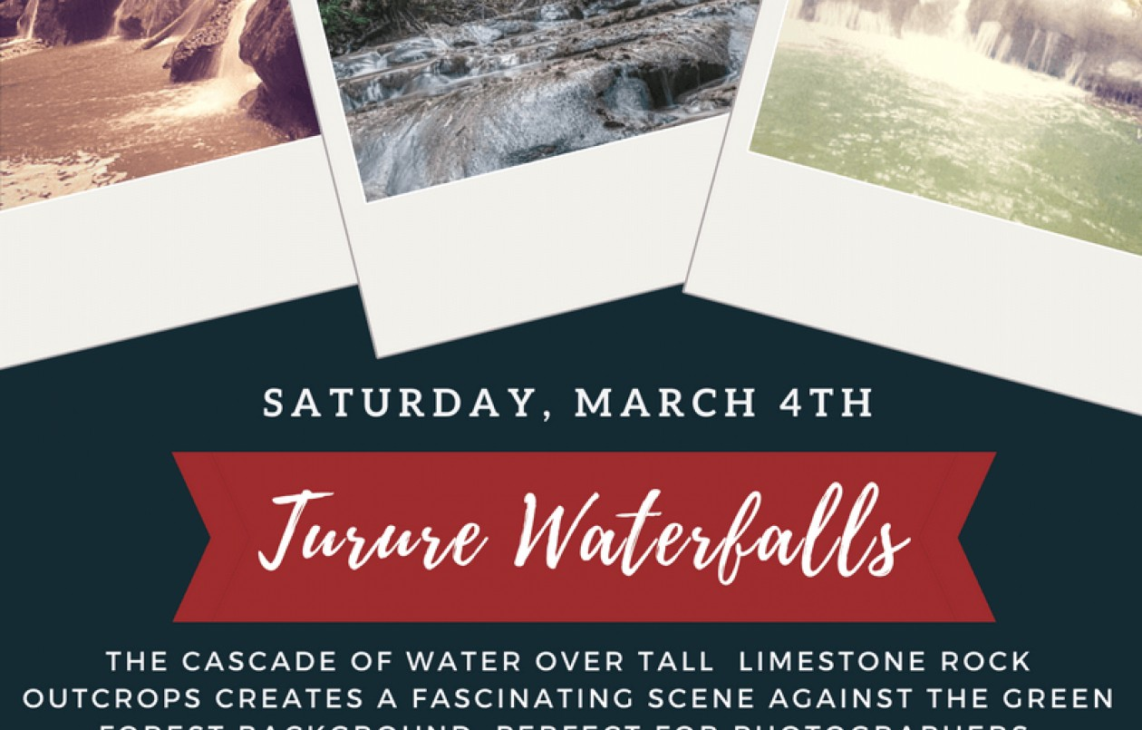 Turure Water Steps 3.3.18