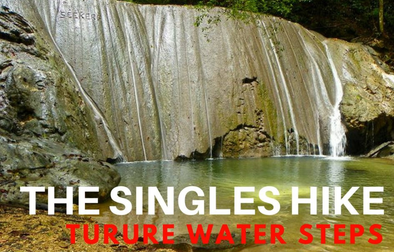 The Singles Hike - Turure Water Steps