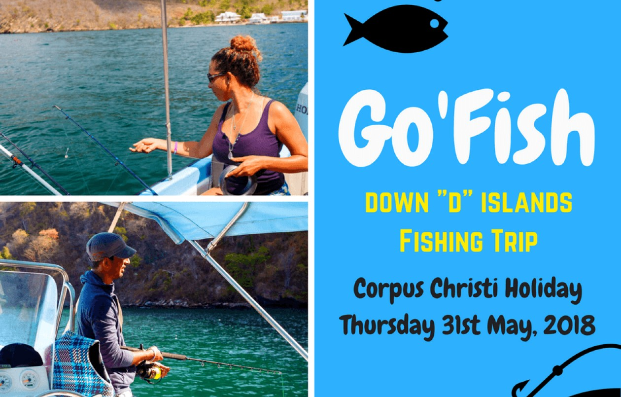 Go'Fish- Down  D  Islands Fishing Trip 2