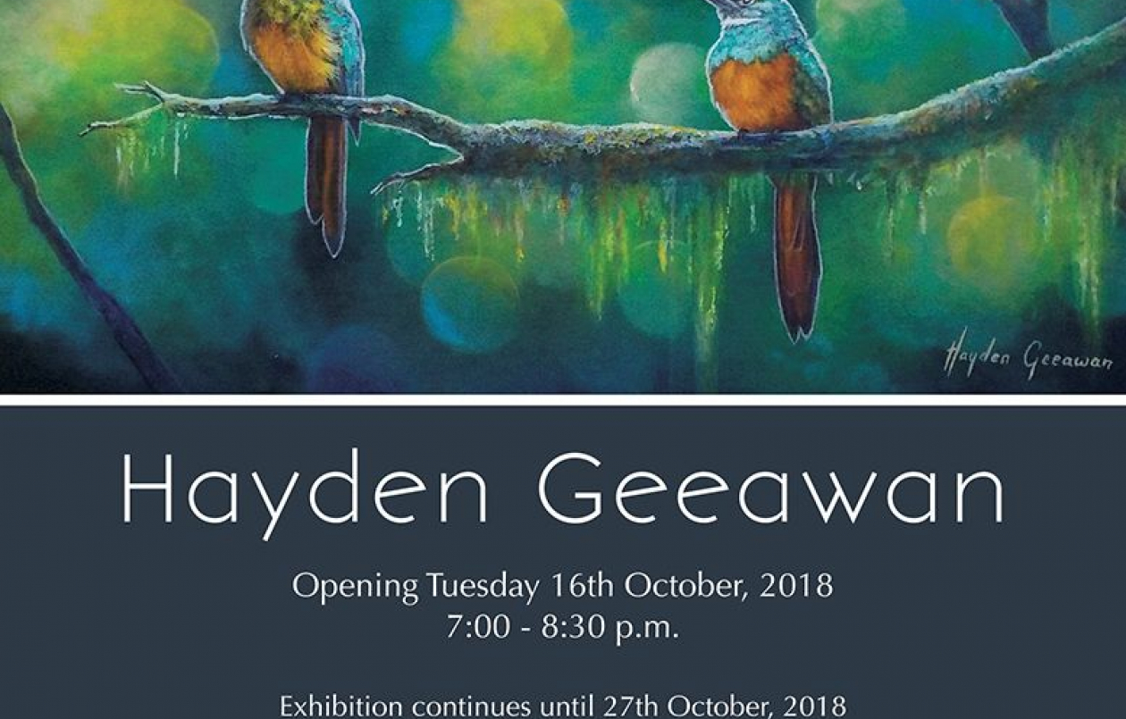 Art Exhibition by Hayden Geeawan