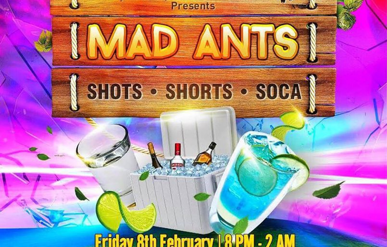 MAD ANTS Cooler Fete 2019