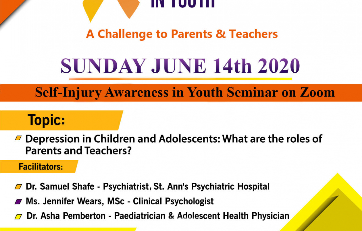 Self-Injury Awareness in Youth Seminar
