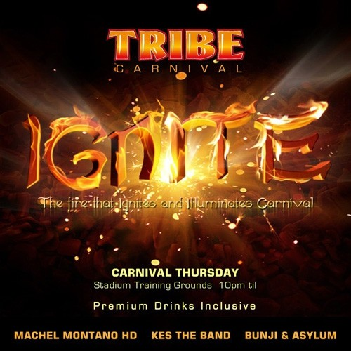 Tribe Ignite 2013