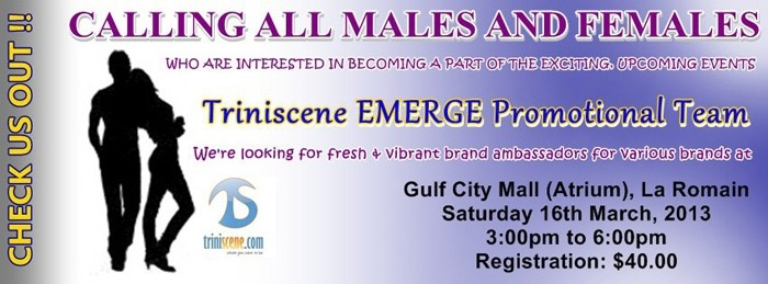 Triniscene EMERGE Promotional Team Casting