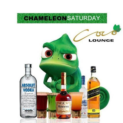 Chameleon Saturdays: Karma The Band