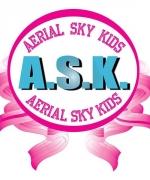 Aerial Sky Kids